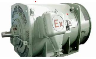 NEMA Explosion Proof Electric Motor Weg explosion proof motor