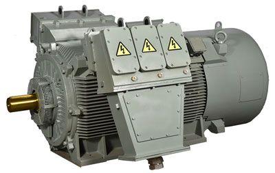 High voltage industrial motor